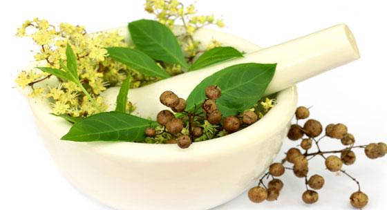 Jothi Vita Healing